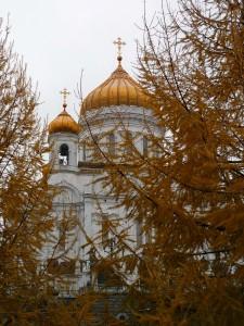 La cathédrale St Sauveur