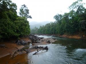 Rivière bleue 2