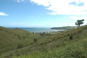 paysage de la côte Ouest