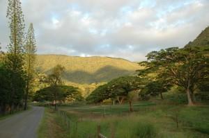 Paysage montagneux de Sarraméa