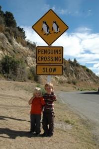Drôle de signalisation routière en NZ!!!