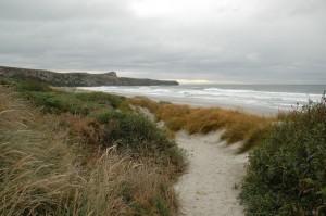 Plage d'Allan sur Otago