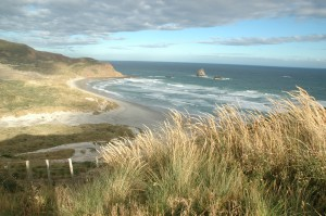 Alan Bay OTAGO