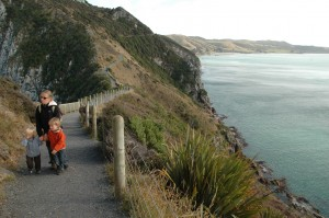 Promenade sur Nugget Point