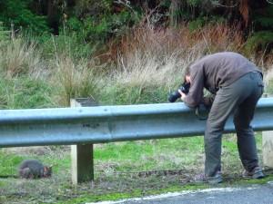 Photographe animalier en action!!!
