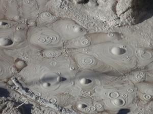 piscine de boue