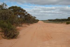 piste permettant l'accès au parc du Mungo