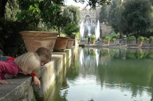 Observation des poissons du Canal