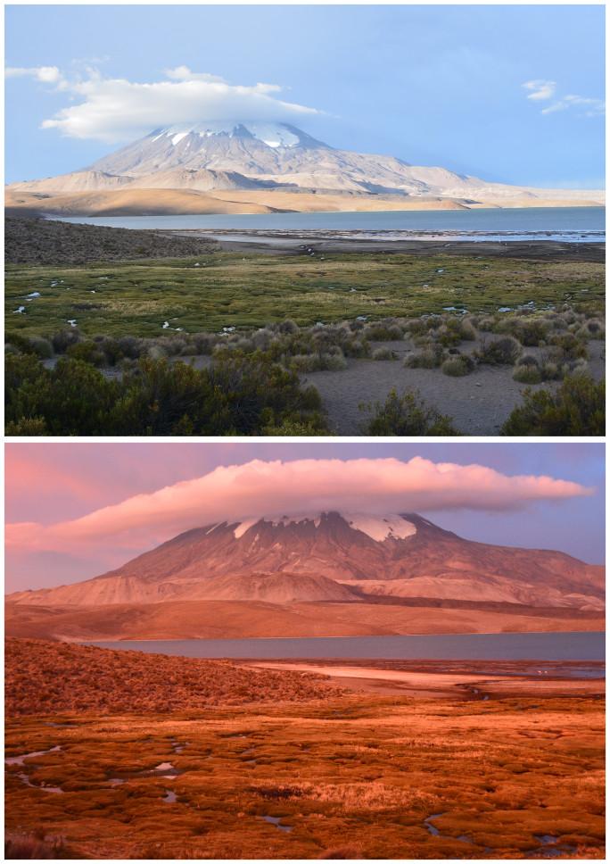 05_Route des volcans-salar Surire_10