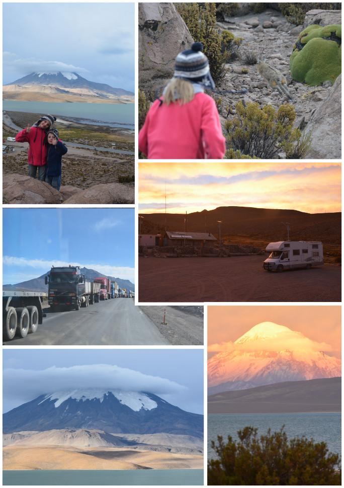 05_Route des volcans-salar Surire_11